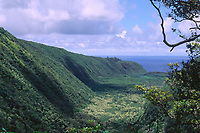 Pololu valley View from deep in the valley The Big Island of Hawaii