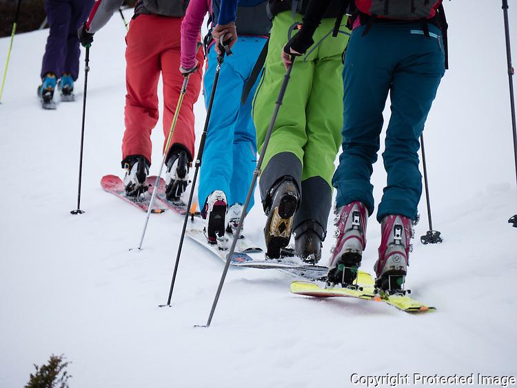 Skiløpere på topptur. ---- Skiers climbing hill.