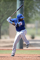 Texas Rangers outfielder Jamie Jarmon (40) during an Instructional League game against the Cincinnati Reds on October 7, 2013 at Goodyear Training Complex in Goodyear, Arizona.  (Mike Janes/Four Seam Images)