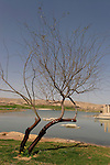 Israel, Yeruham park in the Negev