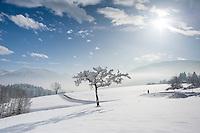 Germany, Upper Bavaria, Chiemgau, between Ruhpolding and Siegsdorf: winter scenery, walking | Deutschland, Oberbayern, Chiemgau, zwischen Siegsdorf und Ruhpolding: Winterspaziergang in traumhafter Winterlandschaft