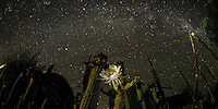 queen of the Night, Nieu Bethesda, South Africa 2010