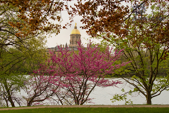 May 9, 2018; Main Building, Golden Dome, St. Joseph Lake, spring 2018. Photo by Barbara Johnston/University of Notre Dame