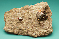 GARNET IN SCHIST<br />