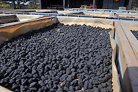 "A tray of gunpowder coated cork drying in the sun, Katakai Fireworks Co., Ltd, Katakai, Japan, April 6, 2009.  The company makes the world's largest firework, a 120cm round shell called a ""yonshakudama""."