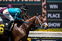 ARCADIA, CA - MAY 27: Stormy Liberal #6 with Noberto Arroyo Jr. up wins the Daytona Stakes at Santa Anita Park  on May 27, 2017 in Arcadia, California. (Photo by Alex Evers/Eclipse Sportswire/Getty Images)