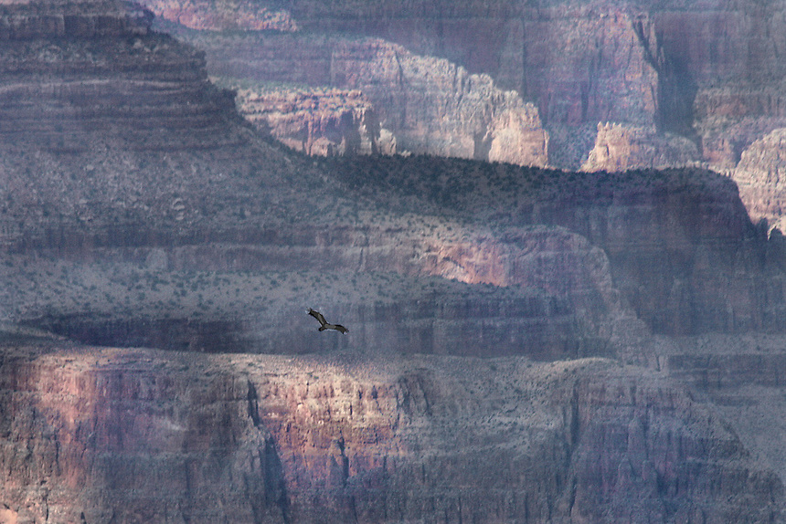 Photography taken at the Grand Canyon, Arizona 2011.