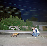 Robin waits to feed a mother fox that comes to her house every evening at dusk in Wassaic, NY.