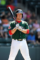 First baseman Tim Roberson (15) of the Greenville Drive bats in a game against the Savannah Sand Gnats on Sunday, June 22, 2014, at Fluor Field at the West End in Greenville, South Carolina. Greenville won, 7-3. (Tom Priddy/Four Seam Images)