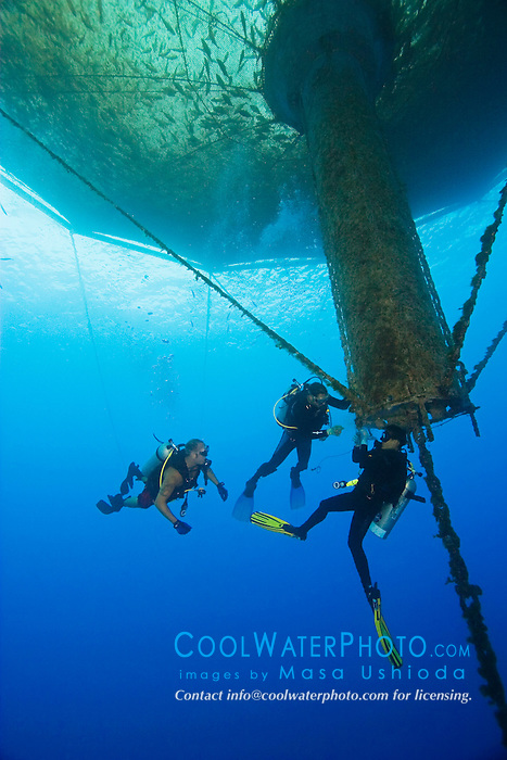scuba diving workers, repairing 3,000-cubic-meter submersible fish pen installed in open ocean just off Kona Coast to raise Kona Kampachi, Hawaiian yellowtail, aka almaco jack or kahala, Seriola rivoliana, Kona Blue Water Farms, Big Island, Hawaii, Pacific Ocean
