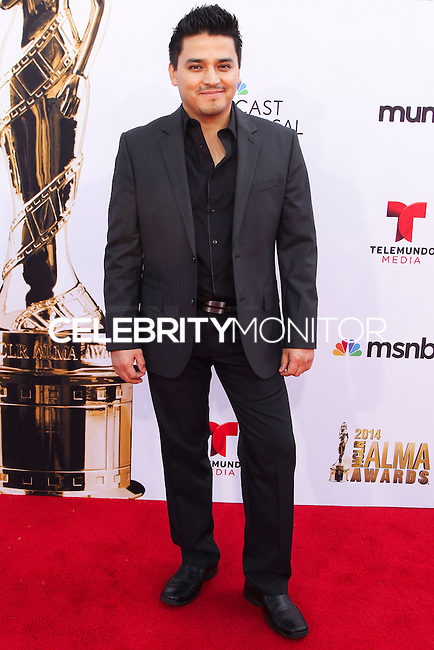 PASADENA, CA, USA - OCTOBER 10: Douglas Spain arrives at the 2014 NCLR ALMA Awards held at the Pasadena Civic Auditorium on October 10, 2014 in Pasadena, California, United States. (Photo by Celebrity Monitor)