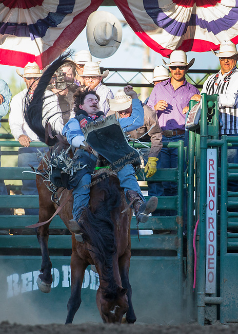 Wyatt Denny from Minden Nevada rides in the Bareback Bronc Riding event during the Reno Rodeo on Sunday, June 23, 2019.