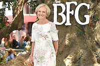 "Mary Berry<br /> arrives for the ""BFG"" premiere at the Odeon Leicester Square, London.<br /> <br /> <br /> ©Ash Knotek  D3141  17/07/2016"
