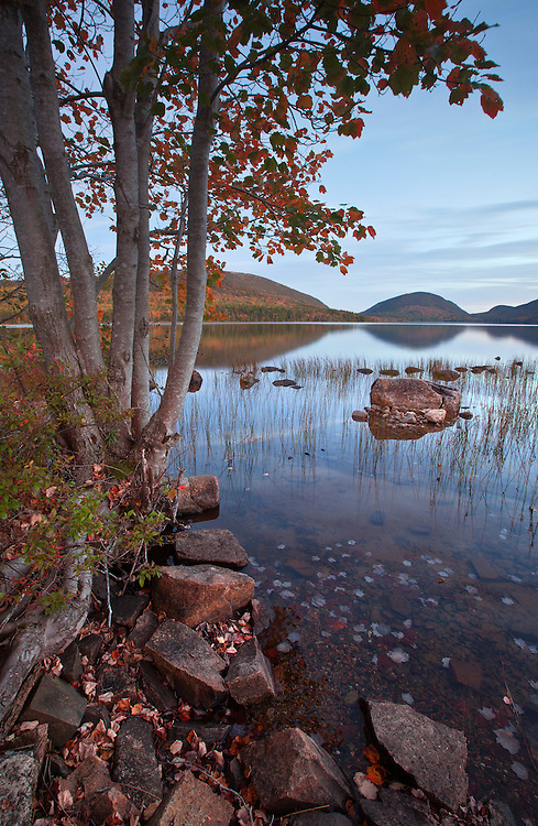 Fall colors arrive to Eagle Lake in Acadia National Park, Maine, USA