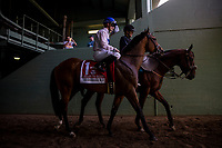 ARCADIA, CA - JUNE 03:  Heart to Heart  and Julien Leparoux before the Shoemaker Mile Stakes at Santa Anita Park  on June 03, 2017 in Arcadia, California. (Photo by Alex Evers/Eclipse Sportswire/Getty Images)