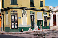 A house in the old town Ciudad Vieja near the harbour. Yellow house that once was elegant but now fallen in disrepair, a dog sitting on the pavement at the corner of the street Mercado Chico Montevideo, Uruguay, South America