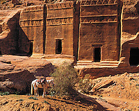 A saddled horse waits in front of a row of carved rock-tombs at the entrance to the fabled city of Petra, Jorda