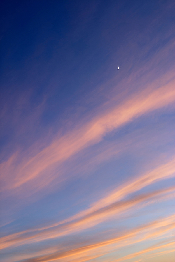 Crescent moon and whispy lavender clouds in evening sky