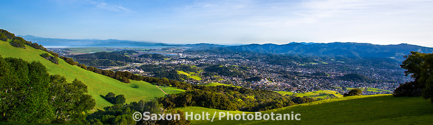 Panorama of City of Novato seen from Mount Burdell State Park, California spring green hills with Oak trees