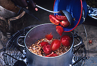 Preparation of a tomato sauce