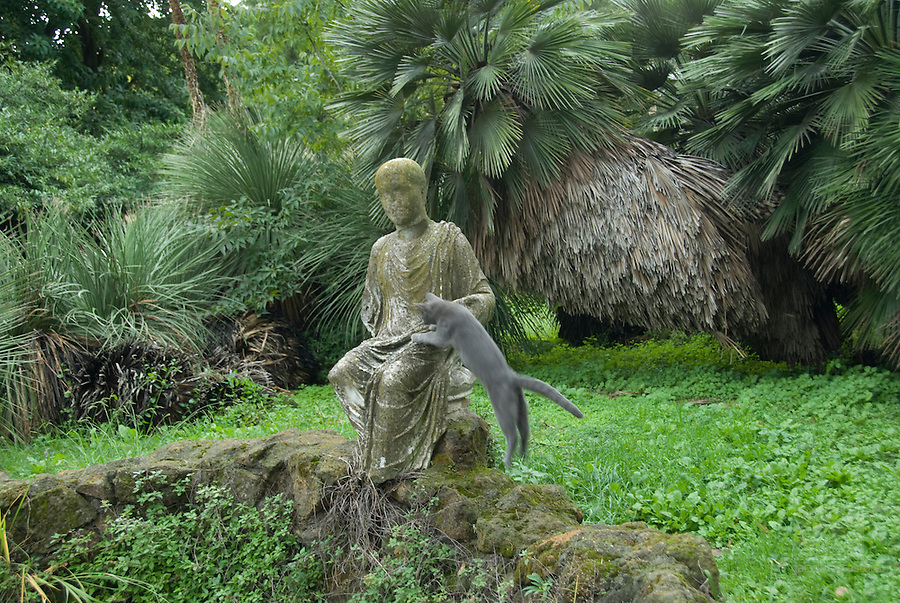 this cat jumped on the lap of this statue in the botanical garden of rome italy