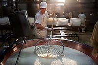 Fiorenzuola: un ragazzo lavora alla produzione del Grana Padano...Fiorenzuola: a man works for the production of Grana Padano in the farm Colla