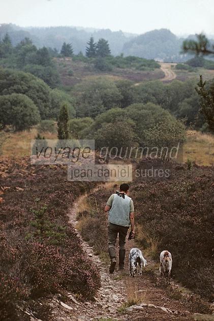 Europe/France/Limousin/23/Creuse/Plateau de Millevaches: Chasse - [AUTO N°31]