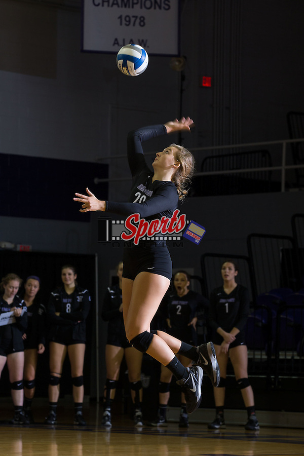 Haley Barnes (20) of the High Point Panthers serves against the Marshall Thundering Herd at the Panther Invitational at the Millis Athletic Center on September 12, 2015 in High Point, North Carolina.  The Thundering Herd defeated the Panthers 3-2.   (Brian Westerholt/Sports On Film)