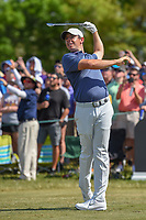 Rory McIlroy (NIR) watches his tee shot on 7 during round 4 of the Arnold Palmer Invitational at Bay Hill Golf Club, Bay Hill, Florida. 3/10/2019.<br /> Picture: Golffile | Ken Murray<br /> <br /> <br /> All photo usage must carry mandatory copyright credit (© Golffile | Ken Murray)