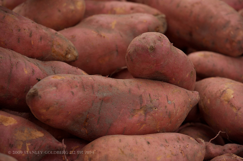 Sweet Potatoes are often mistaken for Yams. Yams are not even distantly related to sweet potatoes.