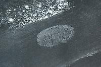 Fingerabdruck, Fingerabdrücke nehmen, 3. Schritt:  mit einem Pinsel wird das Puder von der Glasscheibe gepinselt, der Fingerabdruck wird sichtbar, sammeln, sichten, vergleichen