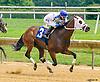 Bootsontheground winning at Delaware Park on 7/28/16