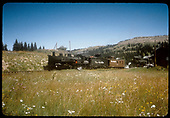 #492 K-37 with caboose #0501 at Cumbres Pass.<br /> D&amp;RGW  Cumbres, CO