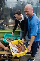 Europe/Provence-Alpes-Côte d'Azur/83/Var/Iles d'Hyères/Ile de Porquerolles: Les pêcheurs apportent leur pêche du jour au  Restaurant du Pêcheur-Hôtel Le Porquerollais