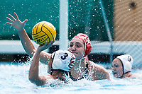 Stanford, CA - March 23, 2019: Aria Fischer during the Stanford vs. Harvard women's water polo game at Avery Aquatic Center Saturday.<br /> <br /> The Cardinal won 20-7.