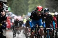 Tadej Pogačar (SVN/UAE-Emirates)<br /> <br /> Elite Men Road Race from Leeds to Harrogate (shortened to 262km)<br /> 2019 UCI Road World Championships Yorkshire (GBR)<br /> <br /> ©kramon
