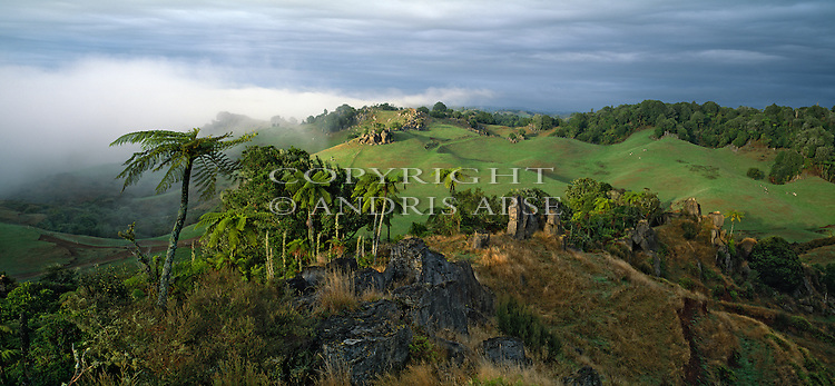 Native forest and farmland in the Waitomo area. Waikato Region. New Zealand.
