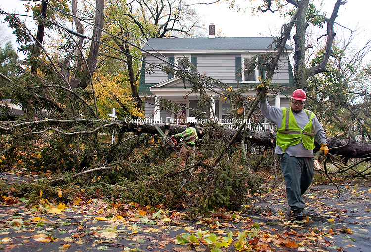 WATERBURY, CT-30 October 2012-103012BF03-- David Delgado, left, and Freddy Morales, both from Waterbury and employees of Lewis Tree Service, Inc., work at removing a White Pine tree that fell Monday night at 24 Vernon Street in Waterbury. The tree broke at it's roots according to Delgado and fell across power lines. The remnants of Hurricane Sandy are still being felt across Connecticut Tuesday as the cleanup begins.  Bob Falcetti Republican-American