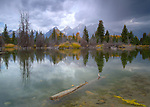 Wyoming, Jackson, Teton National Park. A distant strom over the Teton Range as viewed across a beaver pond with reflecions in autumn.