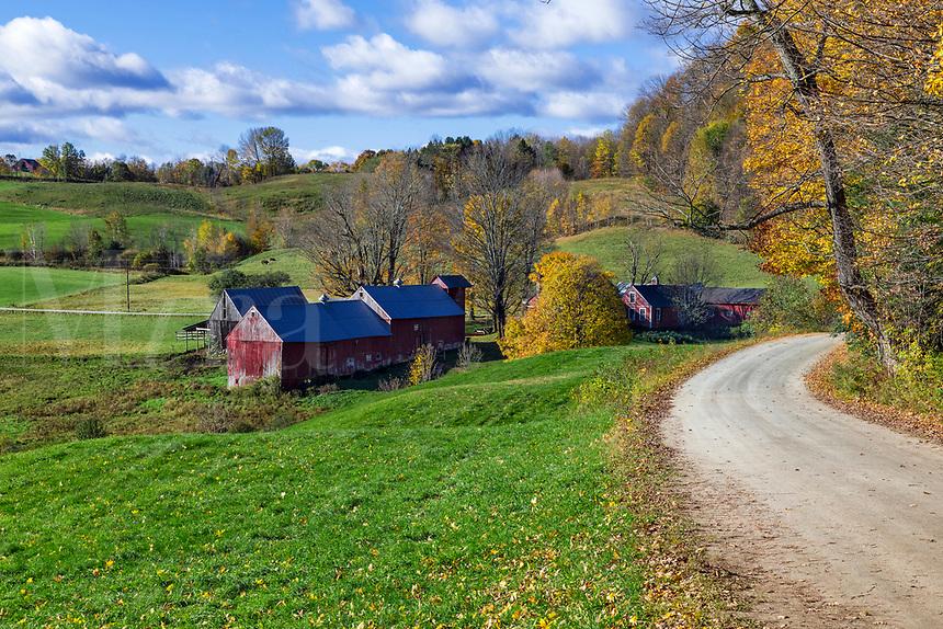Colorful autumn farm, Reading, Vermont, USA.