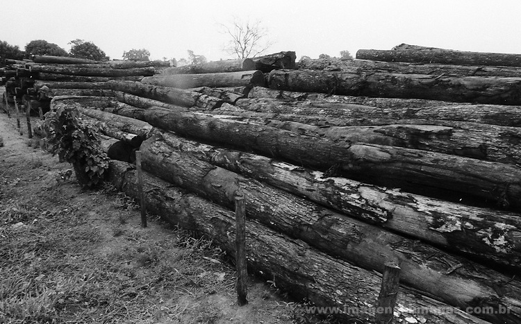 madeira - santana do Araguaia - Pará  .wood - santana of Araguaia - Pará