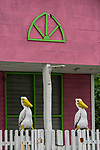 Painted wooden pelican statues on a fence in the fishing village of Rio Lagartos in the Ria Lagartos Biosphere Reserve, Yucatan, Mexico.