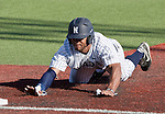 February 24, 2012:   Nevada Wolf Pack's Jay Anderson dives safely back into first against the Utah Valley Wolverines during their NCAA baseball game played at Peccole Park on Friday afternoon in Reno, Nevada.