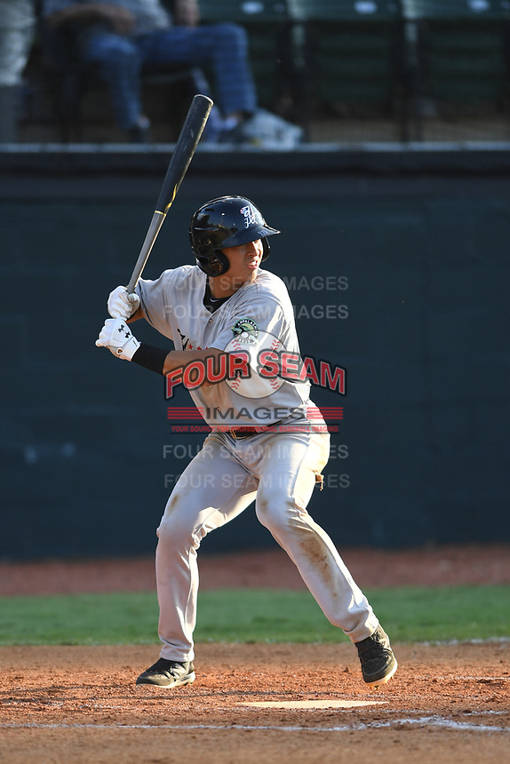 Pulaski Yankees Anthony Volpe (12) bats against the Bristol Pirates at Boyce Cox Field on July 8, 2019 in Bristol, Virginia. The Yankees defeated the Pirates 5-0. (Tracy Proffitt/Four Seam Images)