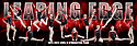 2011 - 2012 Leading Edge Gymnastics