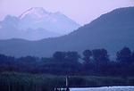 Skagit River Estuary, Mount Baker, Cascade Mountains, Conifer forests, wetlands, Puget Sound, Washington State, Pacific Northwest, USA
