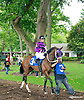 Andiemac before The Small Wonder Stakes at Delaware Park on 9/12/15