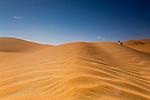 Liwa the Desert we Love