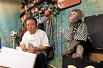 """October 22, 2016, Utsunomiya, Japan -  The pub master Kaoru Otsuka (L) smiles with a Japanese macaque Fuku (meaning happiness) at an izakaya, Japanese pub """"Kayabuki"""" in Utsunomiya, 100km north of Tokyo on Saturday, October 22, 2016. The pub master Kaoru Otsuka trains Japanese macaques to help him and show their entertainment skills to attract customers including lots of foreign tourists.   (Photo by Yoshio Tsunoda/AFLO) LWX -ytd-"""
