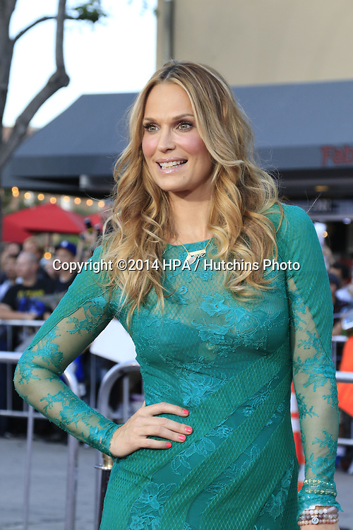 """LOS ANGELES - MAY 15:  Molly Sims at the """"A Million Ways To Die In The West"""" World Premiere at Village Theater on May 15, 2014 in Westwood, CA"""